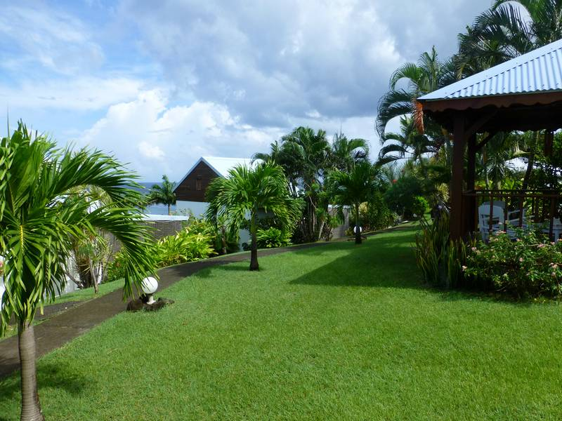 Le Jardin Tropical De Votre Bungalow En Guadeloupe Bleu